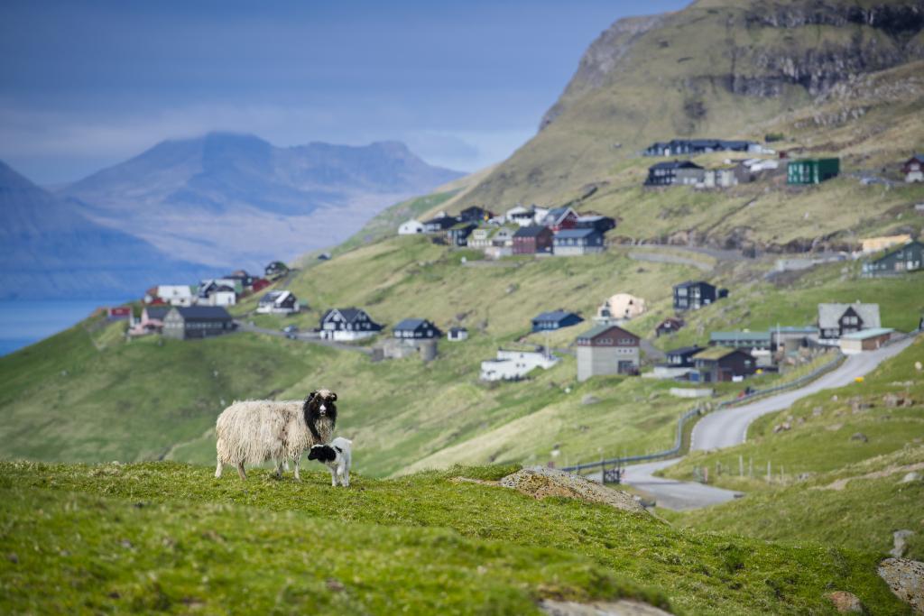 Tórshavn - Velbastaður